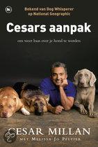 Cesar's aanpak